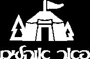 logo-peer-light.png
